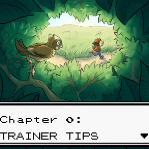 ch0_trainer_tips.png